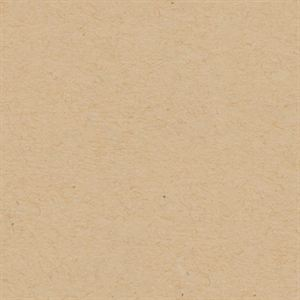 Picture of Oatmeal Solid Core Cardstock